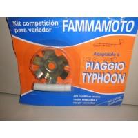 PLACA VARIADOR PIAGGIO TYPHOON DESDE EL 85-02 FAMMAMOTO