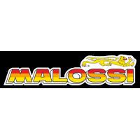 VARIADORES MALOSSI